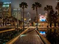 San Diego, Stadt, Nacht, Nordamerika