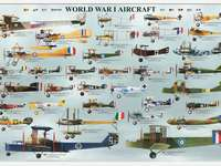 Vliegtuigen Wereldoorlog I