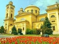 Catedrala Eger din Ungaria