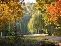 Парк Дебрецен в Унгария