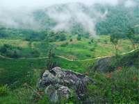 Herkent u dit landschap, in de Ejido de Ayotitán?