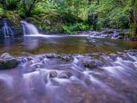 woda spada na środek zielonych drzew