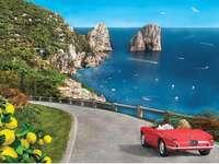 << Sur Capri >>