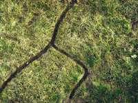μαύρο σχοινί στο πράσινο γρασίδι
