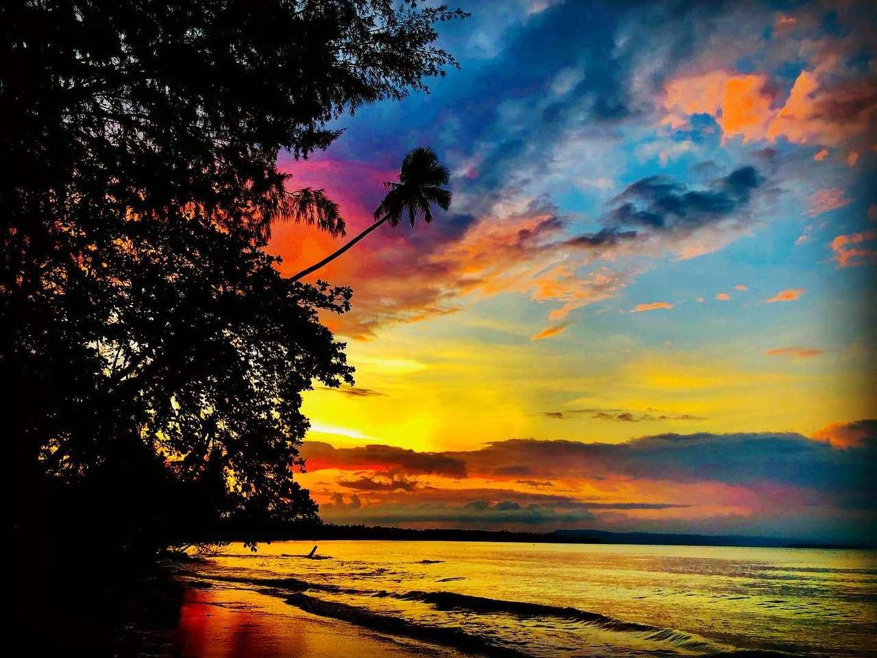 Úžasný západ slunce - Krásný západ slunce na ostrově. Palmy a pláž s oceánem (12×9)