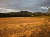 поле с кафява трева под облачно небе през деня