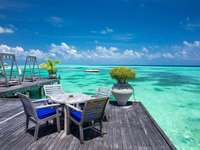 in the maldives