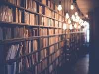 foto de la biblioteca con luces encendidas