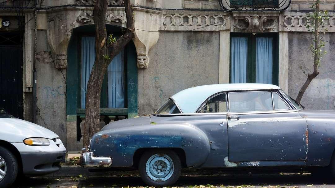blaues klassisches Auto, das tagsüber neben grünem Baum geparkt wird