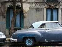 синя класическа кола, паркирана до зелено дърво през деня