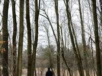 човек в черно яке, ходещ по пътеката