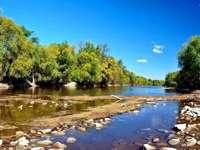 Река, Дървета, Камъни