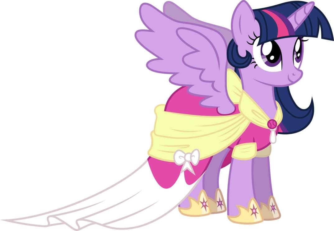 My Little Pony: Rencontrez les poneys