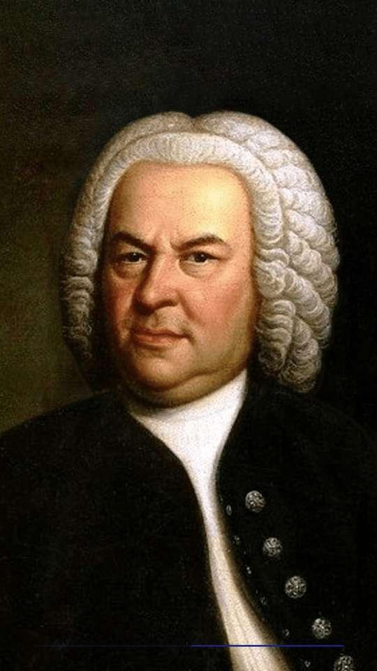 J.S. Bach. quebra-cabeça