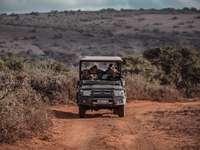 Zwart-witte Jeep Wrangler op Bruin Dirt Road
