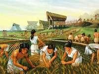 Les gens du néolithique