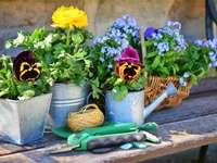 Bloemenregelingen in werkhoek bij het huis