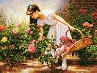 W ogrodzie róży