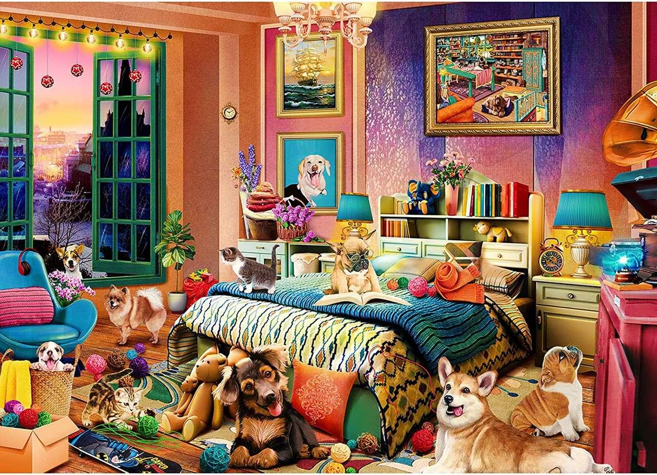 Cameră de câine
