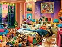 Psí místnost