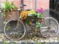 Bike in Liguria.