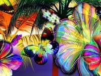 De vlinder zonnebaden in de zon