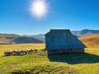 Montagne Zlatibor en Serbie