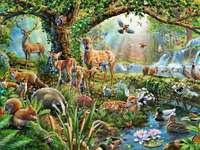 Animaux dans la forêt à un ruisseau