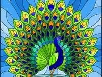 Peacock avec une queue colorée