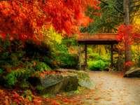Herbst im japanischen Garten