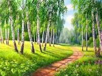 Път в гора от бреза