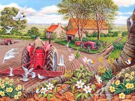 Bunicul pe tractorul său