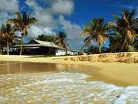 Παραλία στις τροπικές περιοχές