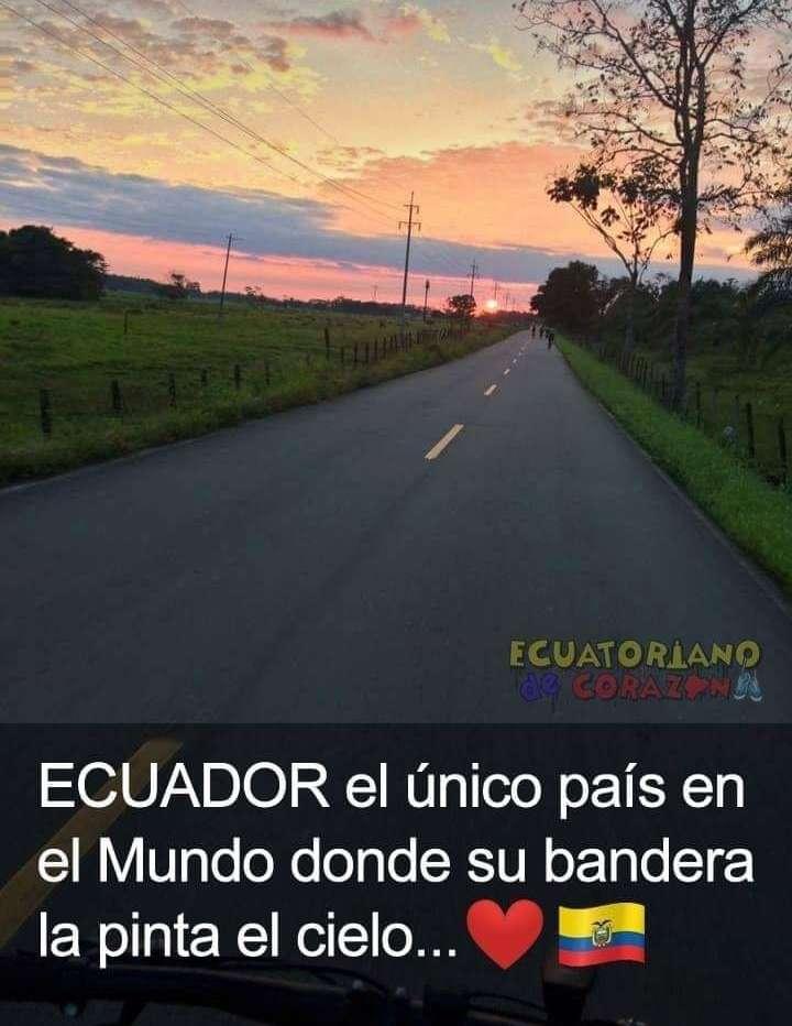 Ecuador bandera rompecabezas
