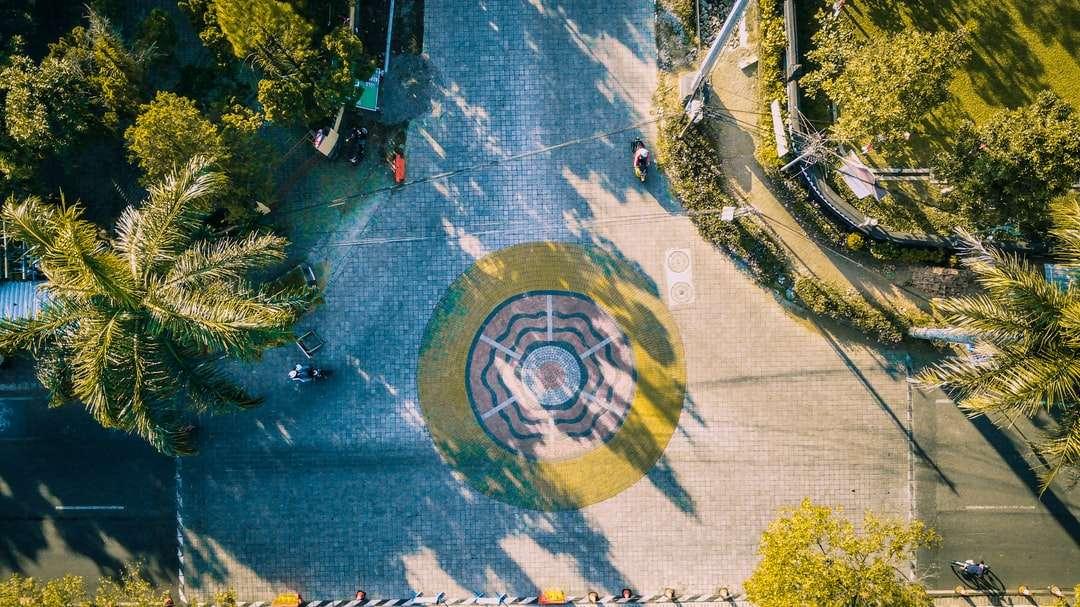 Vista aérea de árboles verdes y carretera.