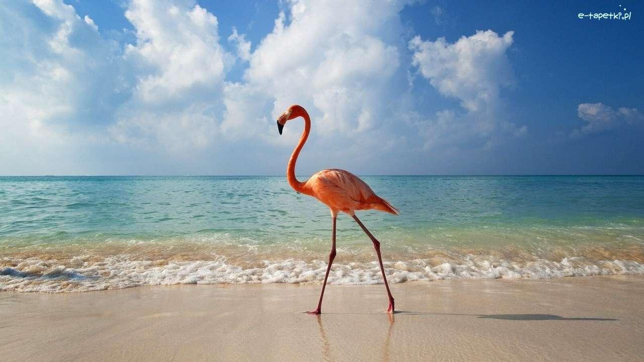 Flamingo en la playa rompecabezas