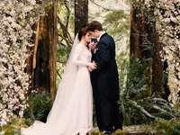 Edward Cullen and Bella Swan