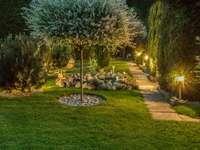 Światła w ogrodzie