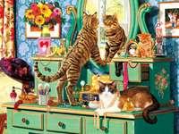 Kočky a toaletní stolek