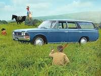 1967 TOYOTA CROWN Vagon