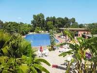 Grekisk ö - Hotell med en swimmingpool