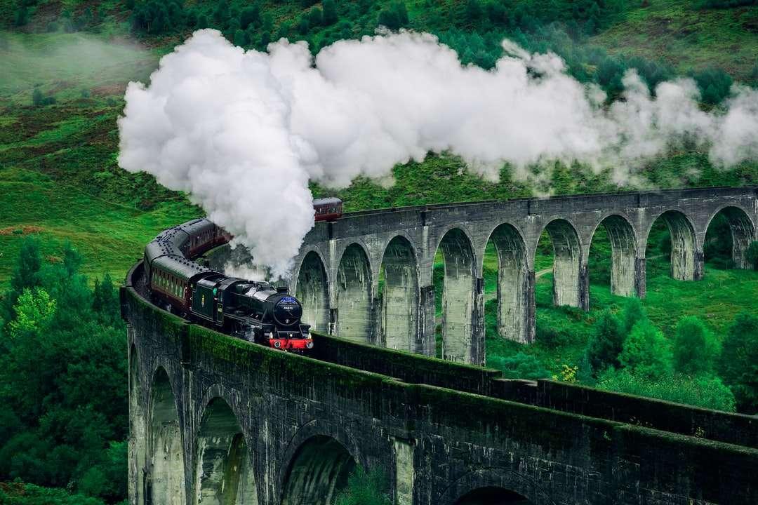 Μαύρο και άσπρο τρένο στη σιδηροδρομική γέφυρα