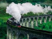 Svartvitt tåg på järnvägsbro