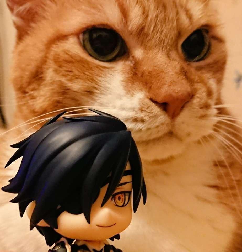 Mitsutada și pisica lui