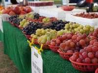 Grüne und rote Runde Früchte auf weißem Kunststoffbehälter
