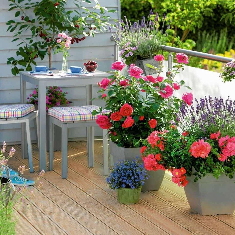 Květiny na balkóně