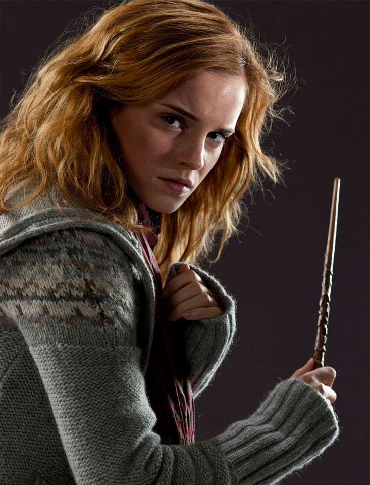 A davvero, davvero, davvero, grande Hermione Granger