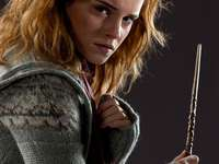 A really, really, really, big Hermione Granger