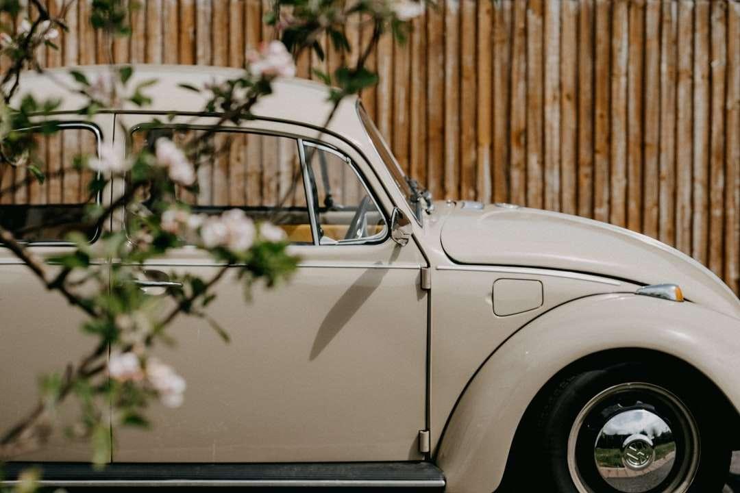 Weißes klassisches Auto geparkt in der Nähe des braunen Holzzauns