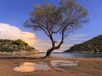 Πόρος Ελληνικό νησί
